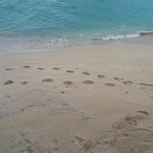 cropped-footprints2.jpg